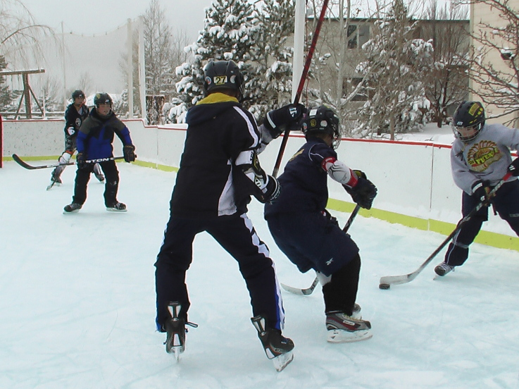 how to build a nhl hockey rink