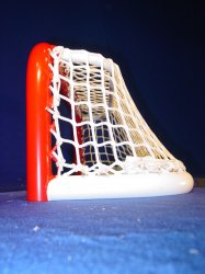 Pond Hockey Net 72x12 TS