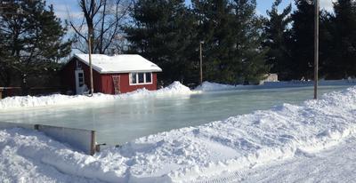 Backyard Ice Rink of Dreams - Winter is Beautiful - Lansing Michigan USA