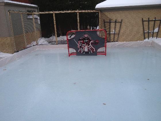 Filet de protection pour patinoire de hockey sur glace - Dr Lorne Levy Toronto, Ontario, Canada